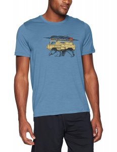 Icebreaker Merino wool t-shirt