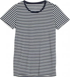 Icebreaker Merino Tech Lite T-shirt women stripes